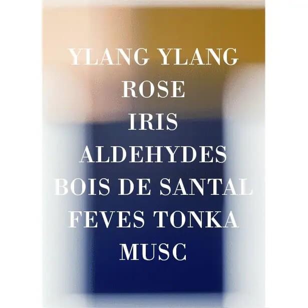 IRIS POUDRE 4