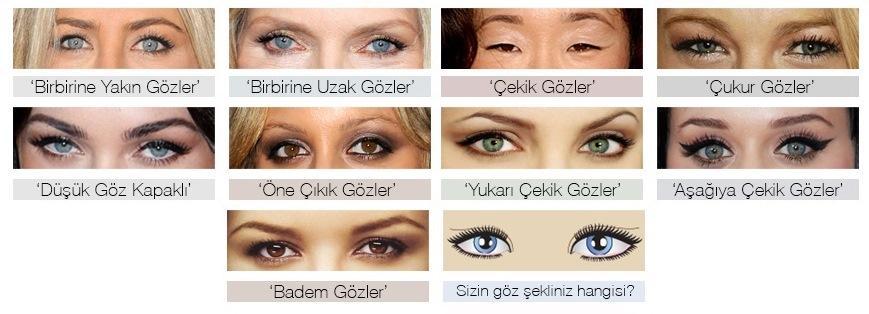 göz tipleri
